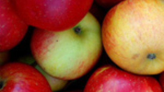 Rote Äpfel – Foto: Inna Paladii, Fotolia.com